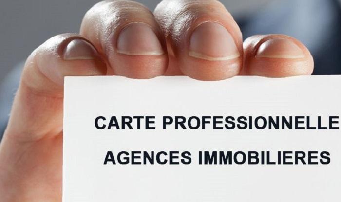 gros problème carte professionnelle agent immobilier Carte professionnelle d'agent immobilier : définition et obligations